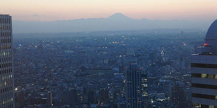 ホテルオークラスカイラウンジ オーキッド倶楽部/新宿野村ビル48F 5枚目の写真