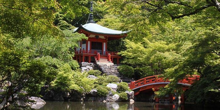 醐山料理 雨月茶屋 4枚目の写真