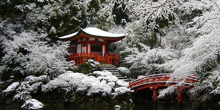 醐山料理 雨月茶屋 6枚目の写真