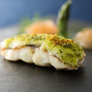 【PRANZO B】食の本質を究極まで追い求めるイタリアン!前菜・メイン・ドルチ…