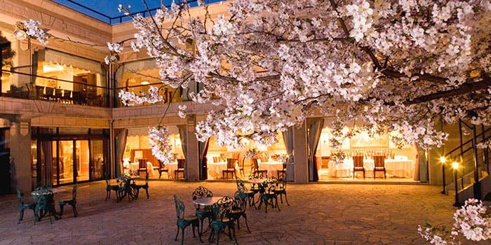 桜満開のキューイーディークラブ外観画像
