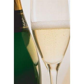 【カップルシート確約】記念日に最適グラスシャンパン付!ワンランク上のプレミアムランチ全5品(3名まで)
