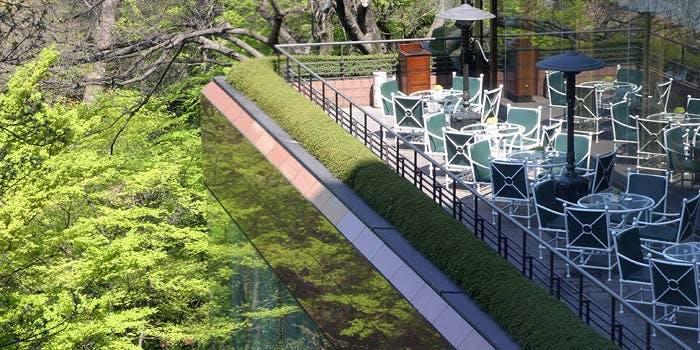 高台から豊かな自然を一望できるレストラン