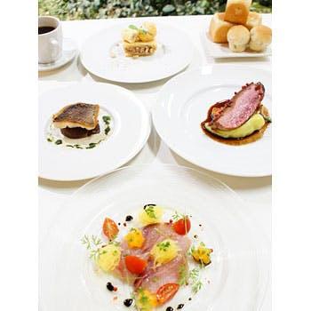 【乾杯ドリンク付き】7,603円→6,000円!選べる前菜&肉・魚のWメインを愉しむランチスペシャルコース