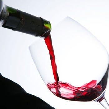 <5/25(金) ワイン会マリアージュディナー> 「バスク地方〜ビスケー湾の恵みとピレネー山脈」
