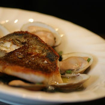 【お肉・お魚Wメイン】お肉料理はNZ産オーシャンビーフまたはNZ産ラムよりチョイス!豪華全6品ディナー