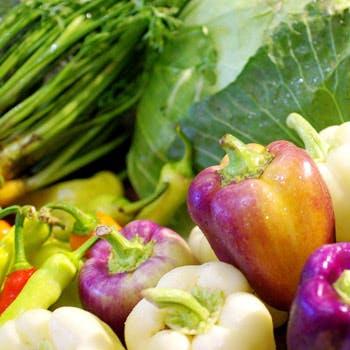 【食前酒付】通常3,280円→2,500円!直送野菜の前菜から、自家製の生湯葉など全5品のカジュアルコース!