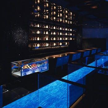 東京|熱帯魚水槽のあるレストラン、バー|熱帯魚 …