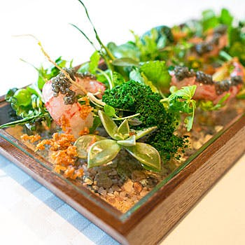 Menu de luxe ムニュー ドゥ ルクス お肉とお魚のダブルメインをお楽しみいただける全4品ランチコース