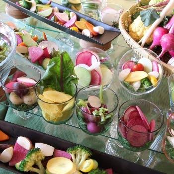 【乾杯スパークリング含む2杯付】朝採れ鎌倉野菜のサラダ・魚or肉が選べるメインなど全4品堪能ランチ