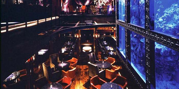 AQUA RESTAURANT & BAR LUXIS 3枚目の写真