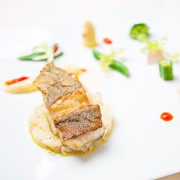 【ワンランク上のランチ】お肉orお魚メイン&パスタはお好きなものを!前菜・スープ・デザートの豪華全5品