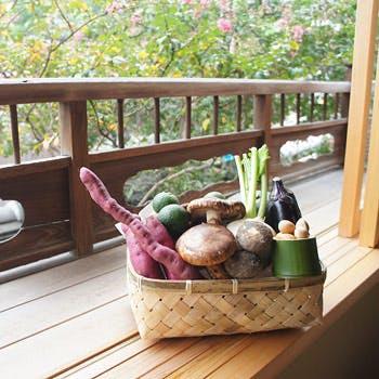 【東山・清水寺足元の五重塔の近く】観光の途中に最適な天重と季節の炊き合わせご用意!京の風情感じて