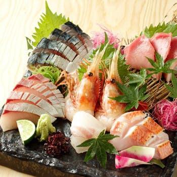 【人気プラン再販】鮮魚厳選のお造りや季節食材を味わえる紫扇のコース。大人空間で楽しむ全8品