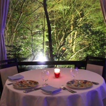 【一休限定】森の中を思わせるテーブルで愉しむ前菜+メイン2皿など全5品!ワゴンデザートはお好きなだけ