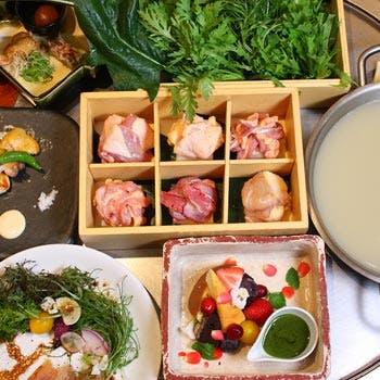 【女性限定】乾杯ドリンク付き!コラーゲンたっぷりな比内地鶏の水炊きに野菜ステーキのフォンデュ全6品