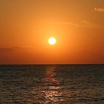 ベイクルーズ・宮古島 モンブランの写真