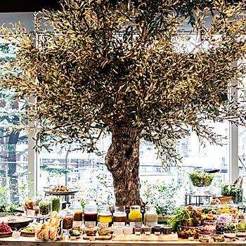 Cosme Kitchen Adaptation アトレ恵比寿の写真