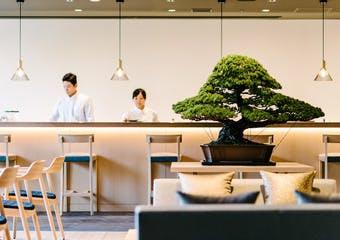 カンラ ラウンジ/ホテルカンラ京都の写真