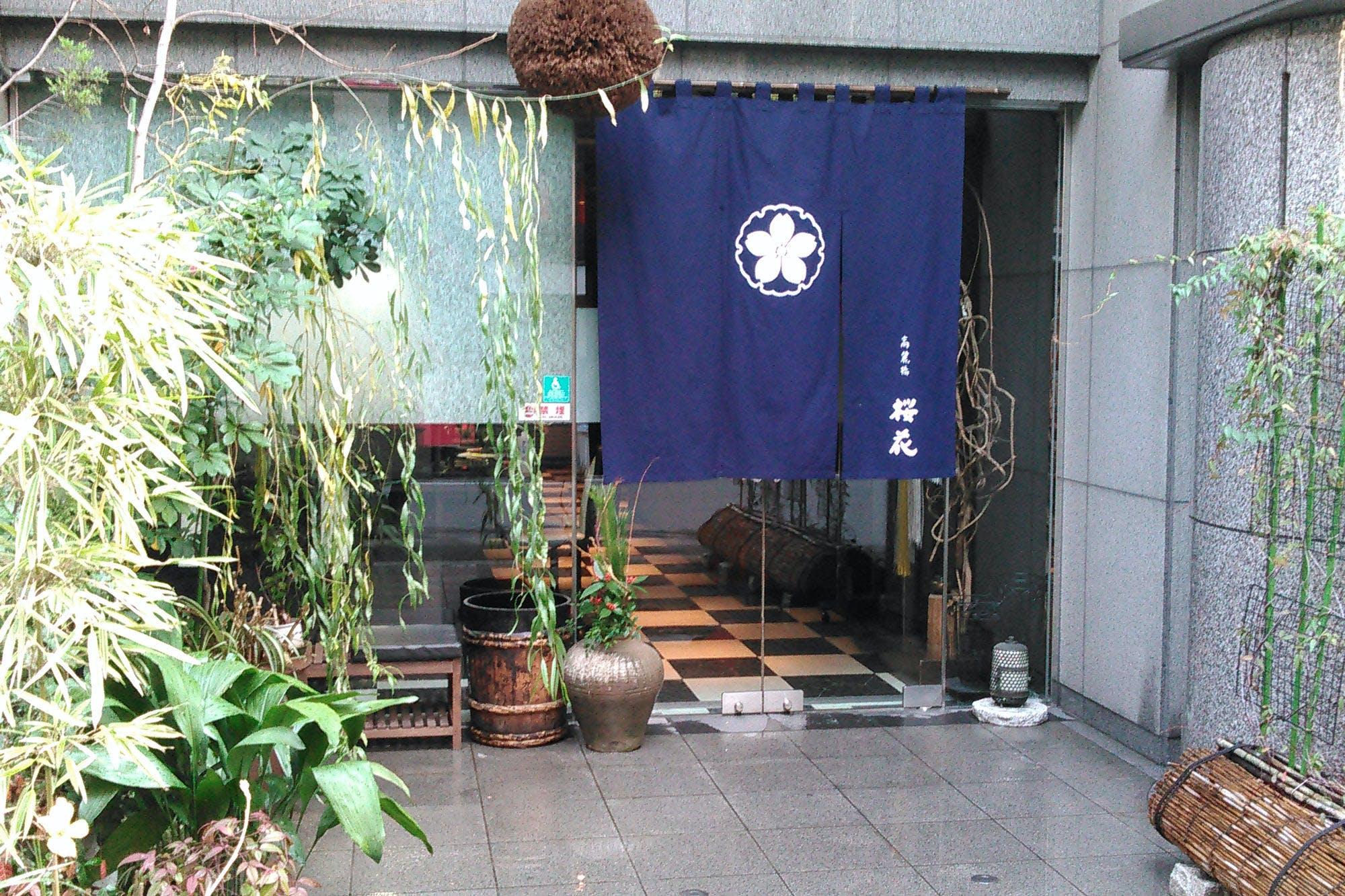 高麗橋桜花