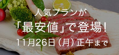 人気プラン最安値 11/12~11/26